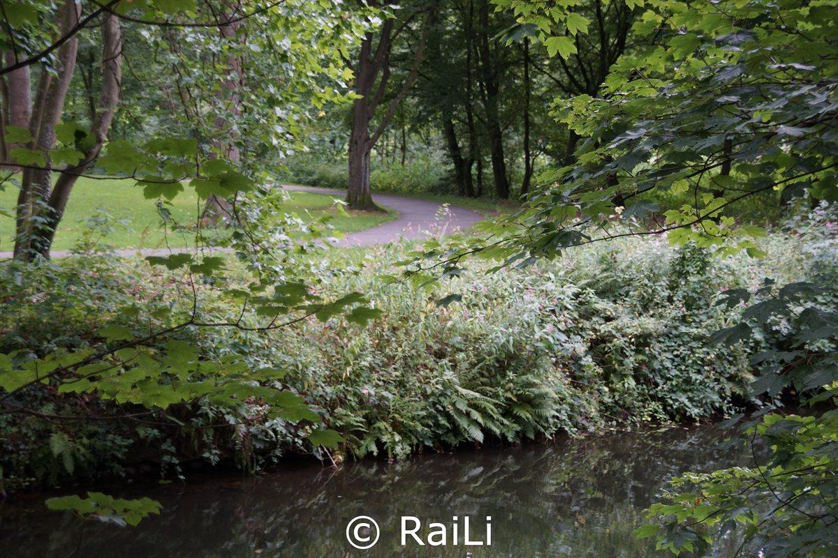 Blick in den dich bewachsenen Park der Brehminsel