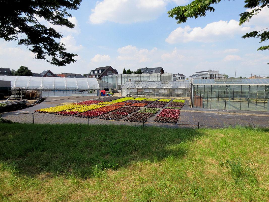 Gartenanbau Vollmerswerth