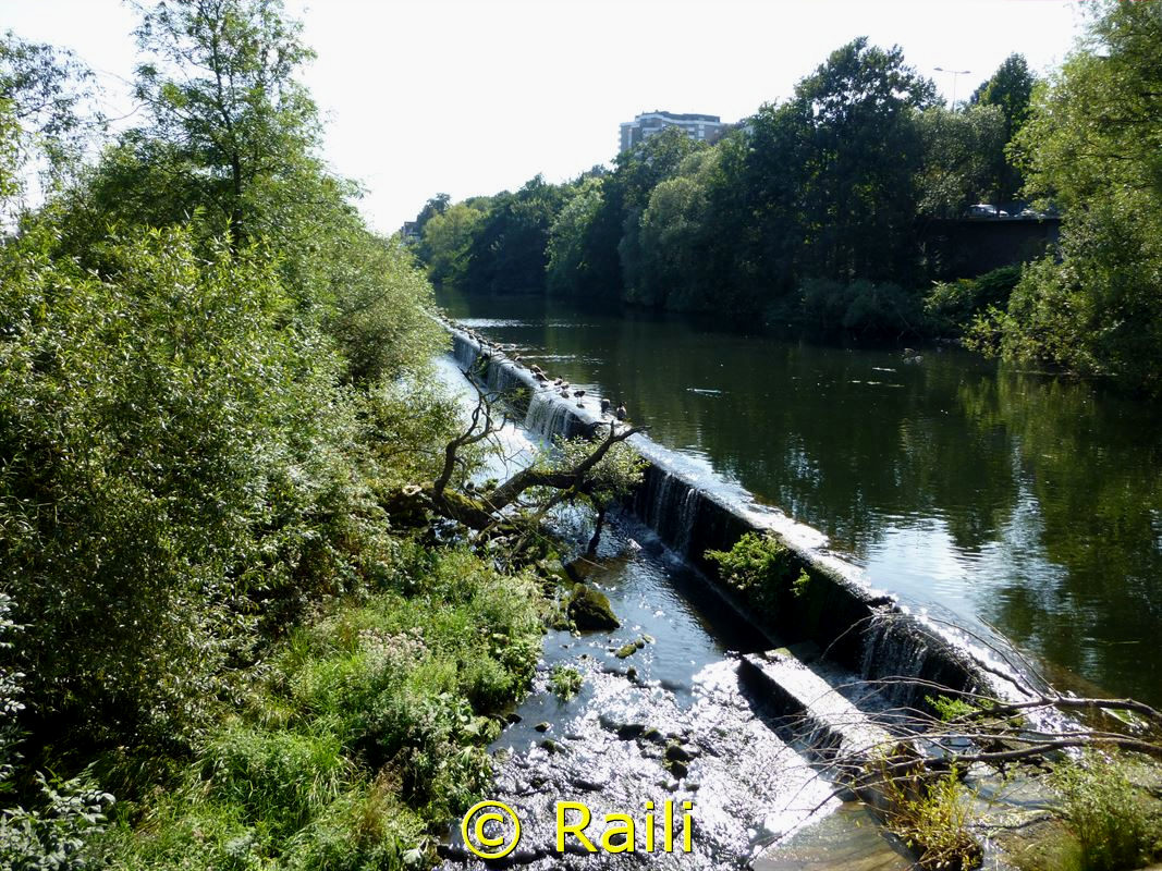 Ruhraue und See
