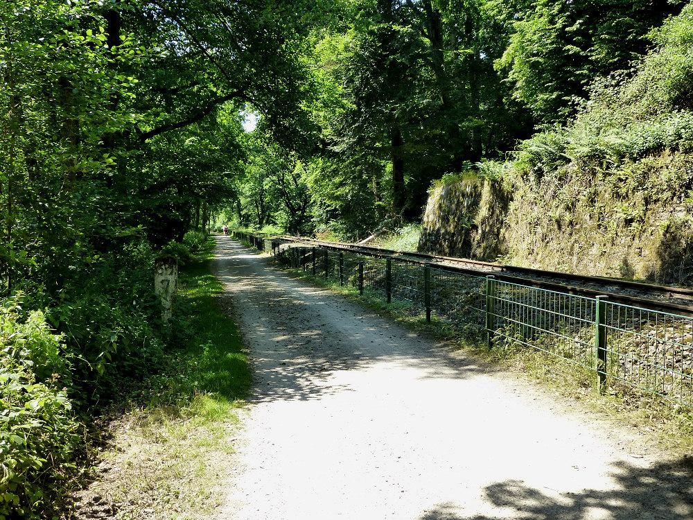 Sandweg neben den Ruhrauen